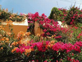 Niki - Kreta