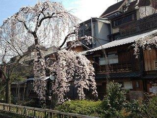 Hotel Live Max Kyoto Ekimae - Japan: Tokio, Osaka, Hiroshima, Japan. Inseln