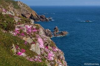 The St.Pierre Park Hotel & Golf Resort - Guernsey - Kanalinsel