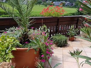 Gasperin - Slowenien Inland