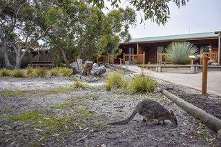 Kangaroo Island Wilderness Resort