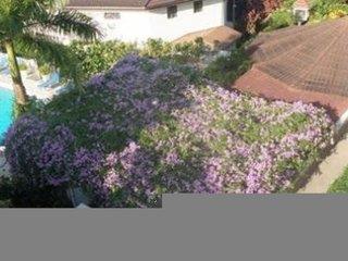 Relax Resort Montego Bay