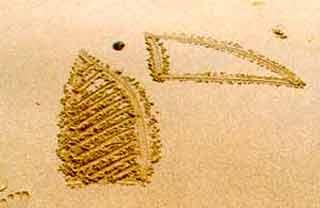 Naturkino Nordnorwegen und Lofoten